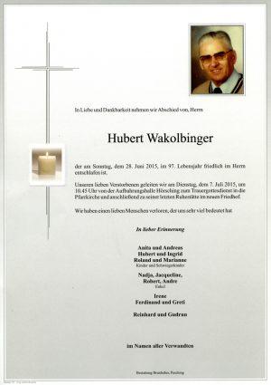 Portrait von Hubert Wakolbinger