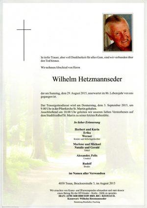 Portrait von Wilhelm Hetzmannseder