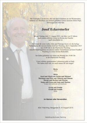 Portrait von Josef Eckerstorfer