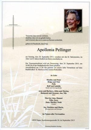 Portrait von Apollonia Pellinger