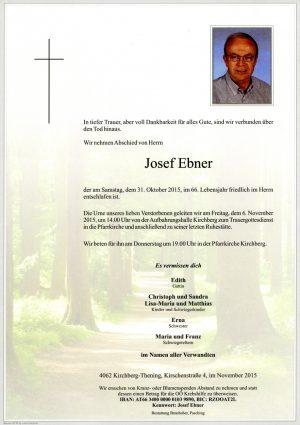 Portrait von Josef Ebner