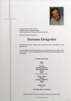 Portrait von Hermann Ehrngruber