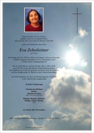 Portrait von Eva Zehetleitner
