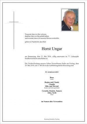 Portrait von Horst Ungar