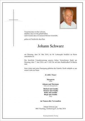 Portrait von Johann Schwarz