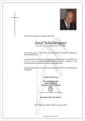 Portrait von Josef Schoißengeyr