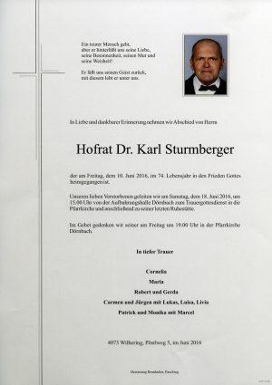 Portrait von Hofrat Dr. Karl Sturmberger