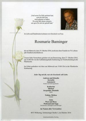 Portrait von Rosmarie Baminger
