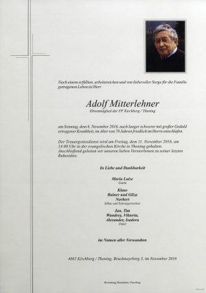 Portrait von Adolf Mitterlehner