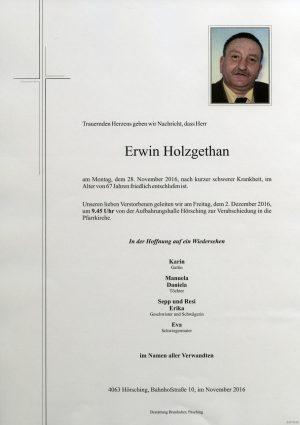 Portrait von Erwin Holzgethan