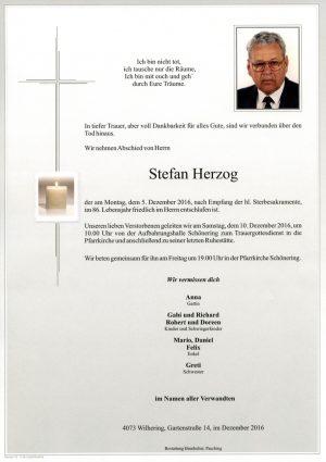 Portrait von Stefan Herzog