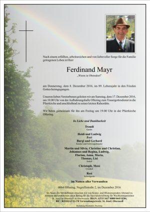 Portrait von Ferdinand Mayr
