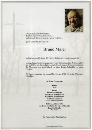 Portrait von Bruno Maier