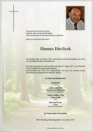 Portrait von Hannes Havlicek