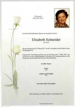 Portrait von Elisabeth Schneider