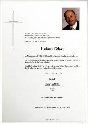 Portrait von Hubert Fölser