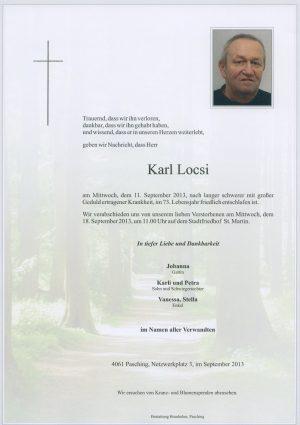 Portrait von Karl Locsi