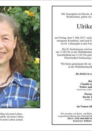 Portrait von Koch Ulrike