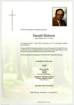 Portrait von Harald Bidmon