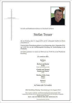 Portrait von Stefan Treuer