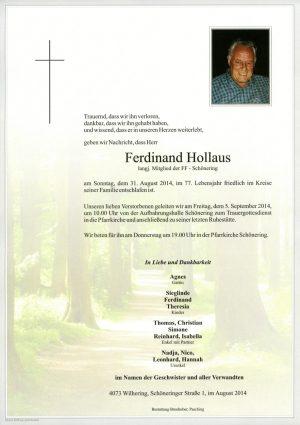 Portrait von Ferdinand Hollaus